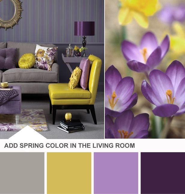 Yellow Purple Decor